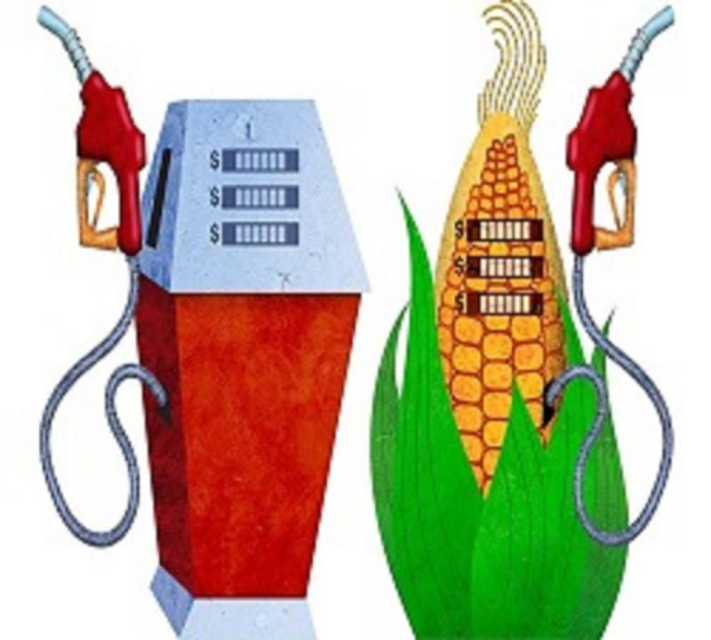 Global Ethanol Market 2020 Business Growth, Industry Research,