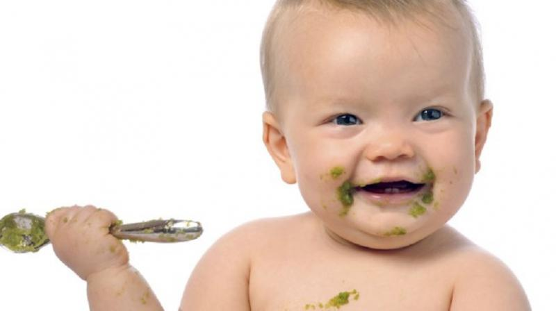 Baby Complementary Food Market - Premium Market Insights