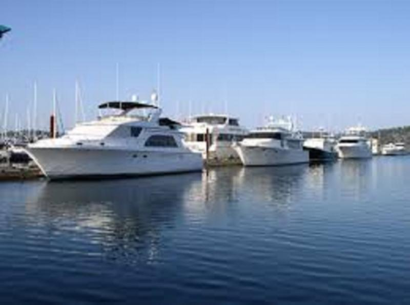 Global Motor Yachts Market 2020 Business Growth, Industry