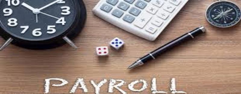 Payroll Services Market