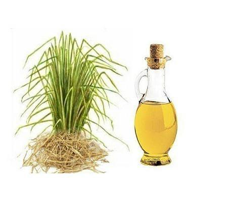 Global Haitian Vetiver Oil Market to Witness a Pronounce Growth