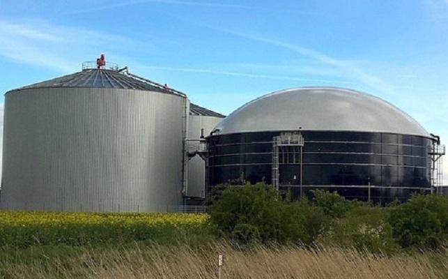 Biogas Market