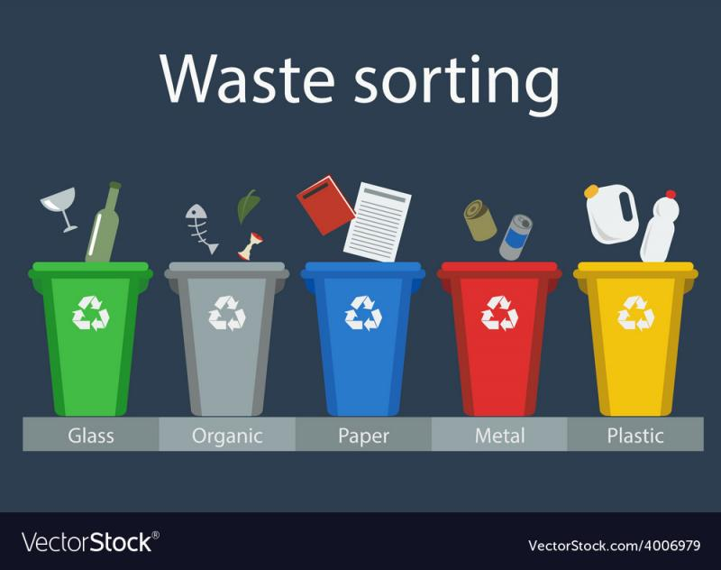 Waste Collection and Sorting