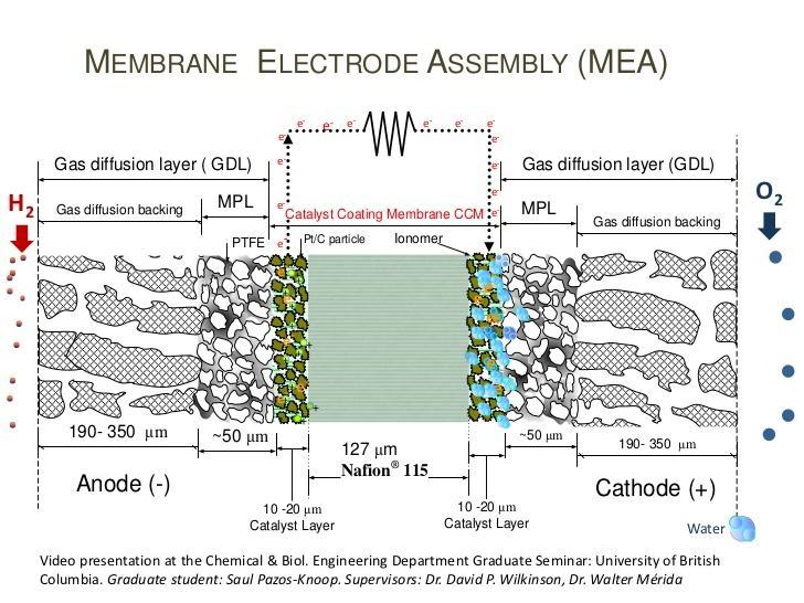 Global Membrane Electrode Assembly Market Analysis