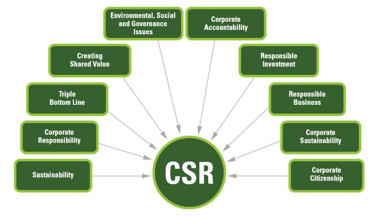 Corporate Social Responsibility (CSR) Software Market