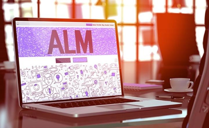 Application Lifecycle Management (ALM) Software