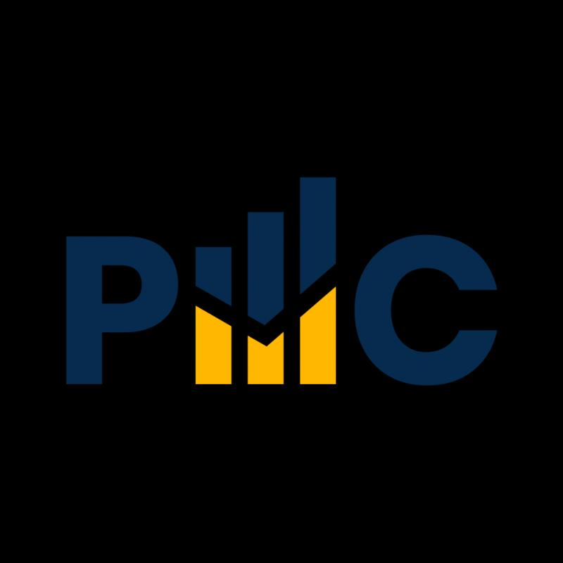 PAN Market Consulting a leader in Market Research & Consulting