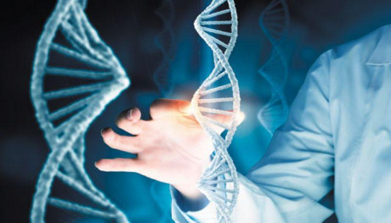 Remicade Biosimilars Industry