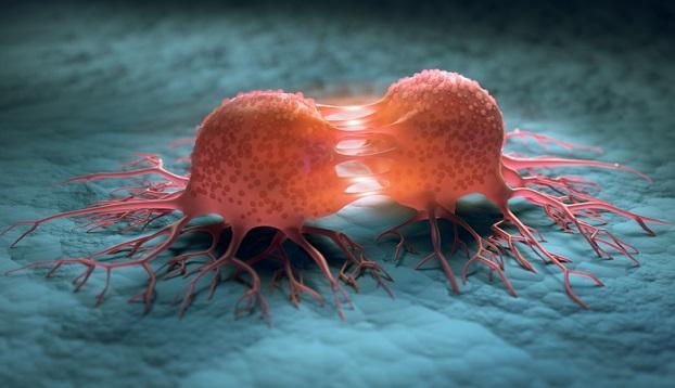 Cancer Stem Cells Market 2020 Global Share, Trend, Segmentation