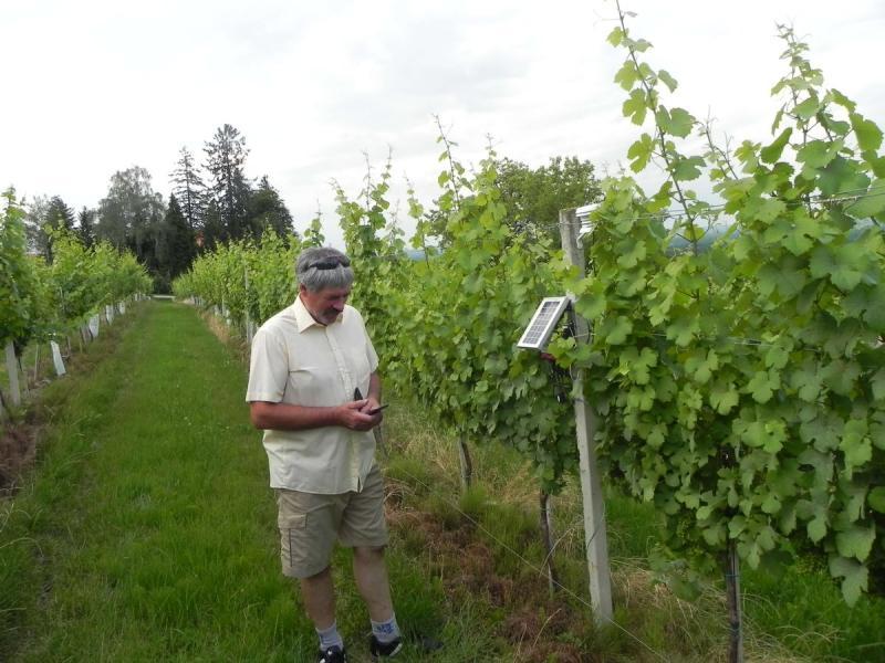 Vineyard Management Software Market - Premium Market Insights