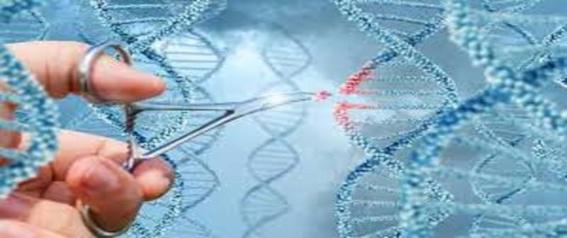 Gene Editing Technology Market May See a Big Move : Major Giants