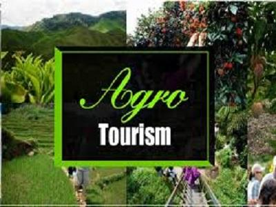 Agro-Rural Tourism Market