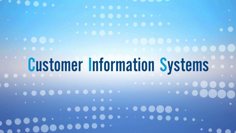 Customer Information System (CIS)