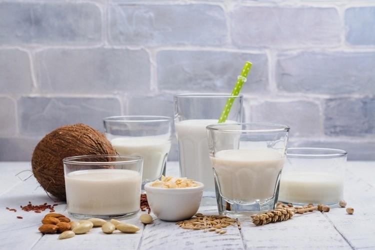 Plant-Based Food Ingredients Market – Detailed Analysis