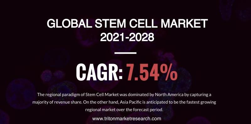 Global Stem Cell Market