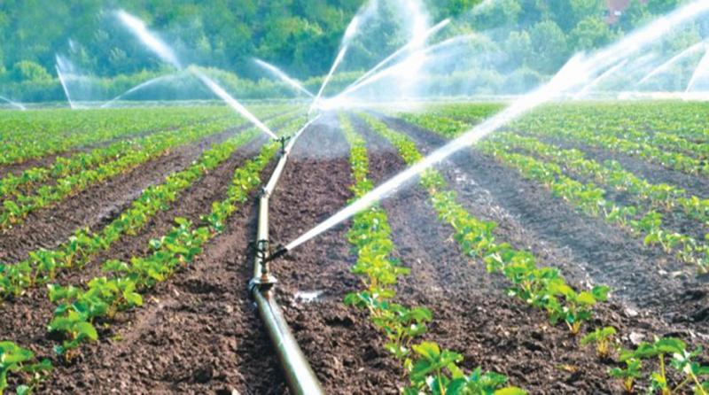 Microirrigation Systems