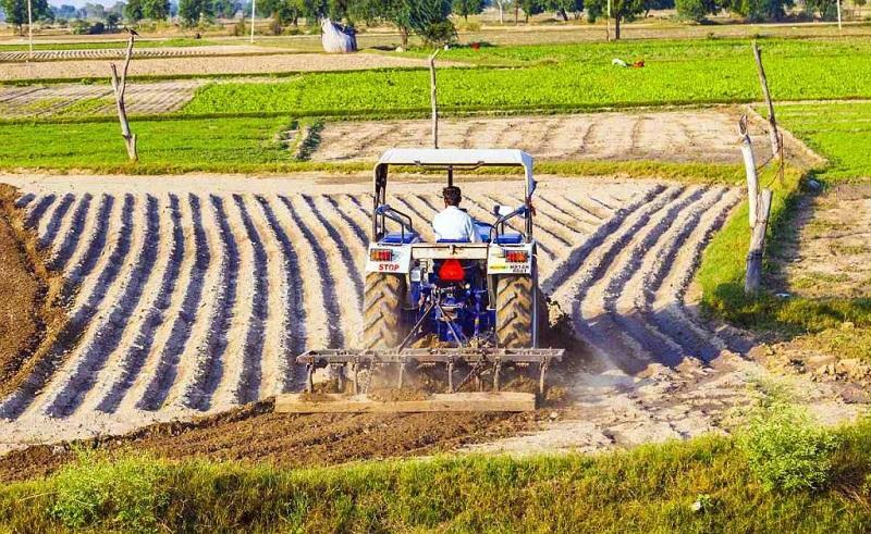 Nigeria Agriculture Market, Nigeria Agriculture Industry,
