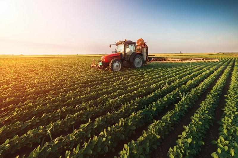 Ethiopia Agriculture Market, Ethiopia Agriculture Industry,