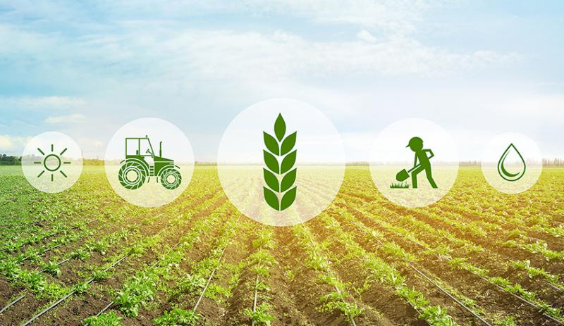 Finland Agriculture Market, Finland Agriculture Industry,