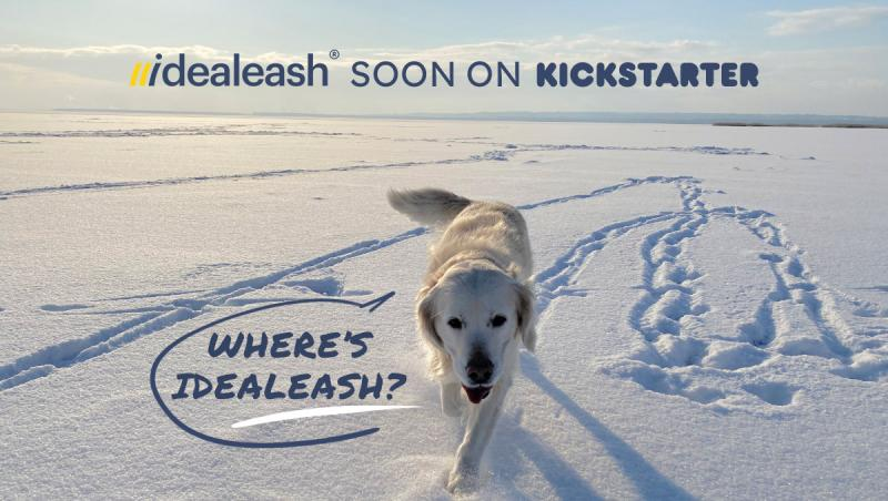 Idealeash- The Number 1 Dog Leash Reinvented!