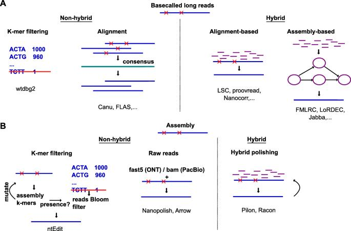 Long Read Sequencing Market
