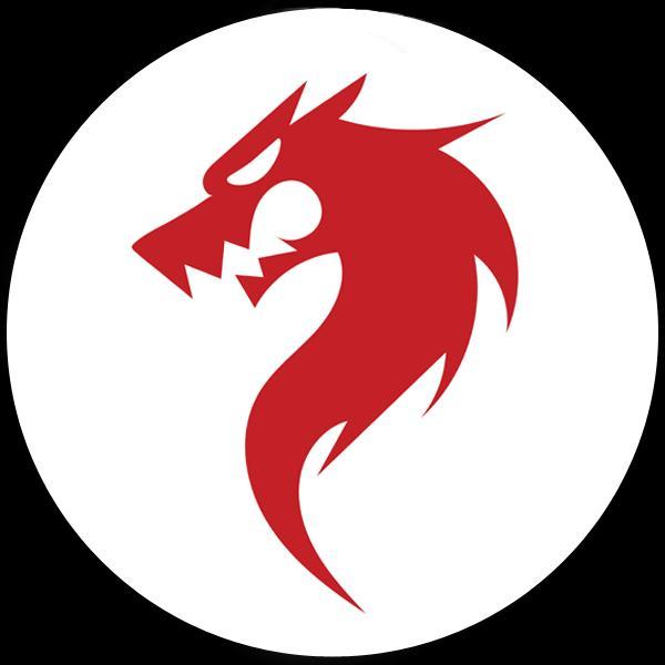 The Dragon Programming Language