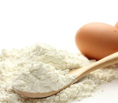 Egg Powder market