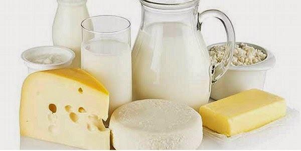 Dairy Protein Market