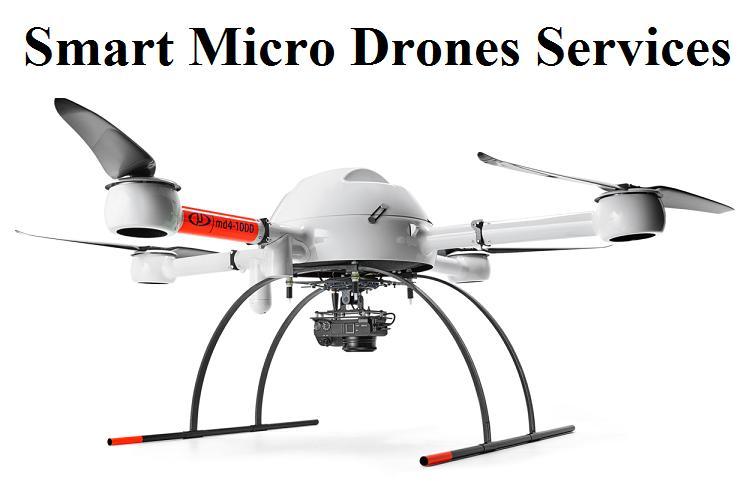 Smart Micro Drones Services Market