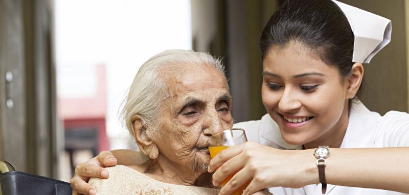 Elderly Care Services Market