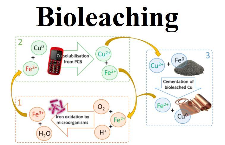 Bioleaching Market