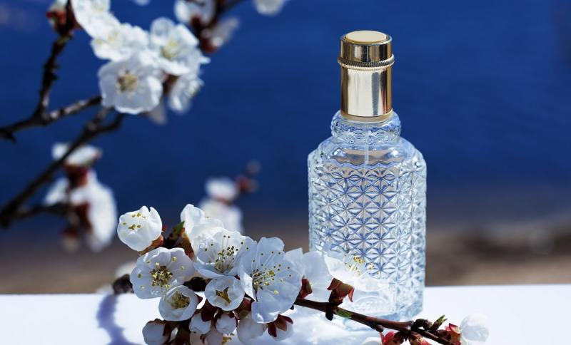 Natural Deodorants and Perfumes Market Share and SWOT Analysis: