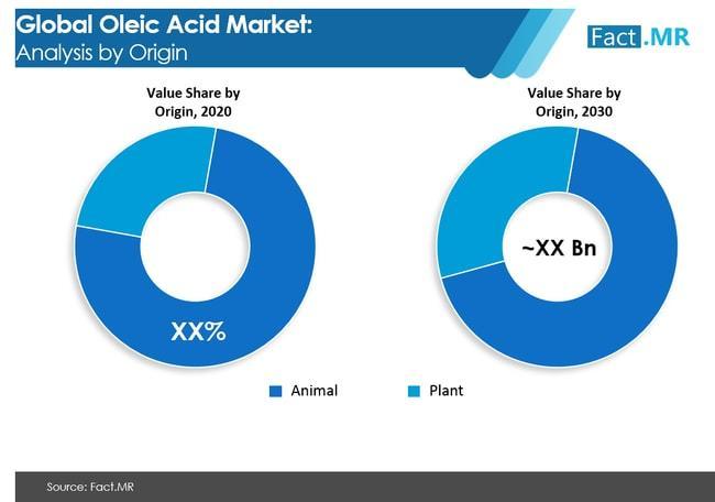 Oleic Acid Market