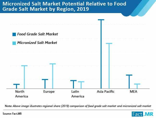 Micronized Salt Market