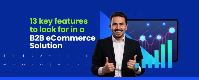 Get a in-depth look at the diverse features offered by INSYNC Commerce for Manufacturers and Distributors