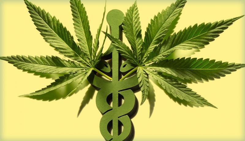 Global Medical Marijuana Market