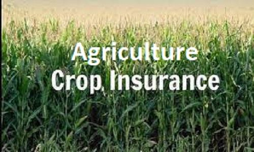 Agriculture Crop Insurance