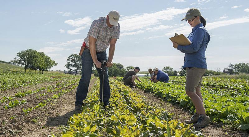 Organic Farming Market