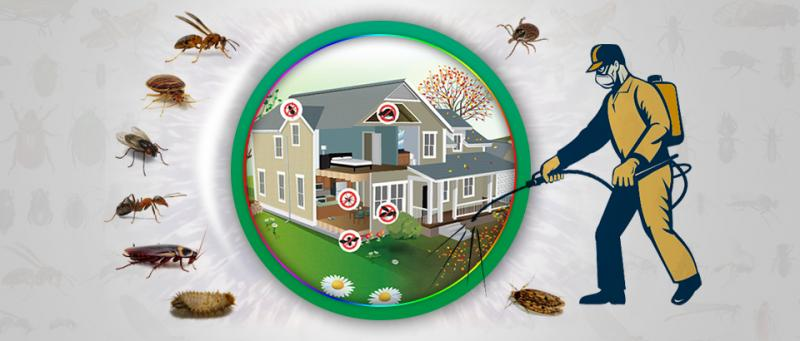 Pest Control Services Market Will See Significant Development