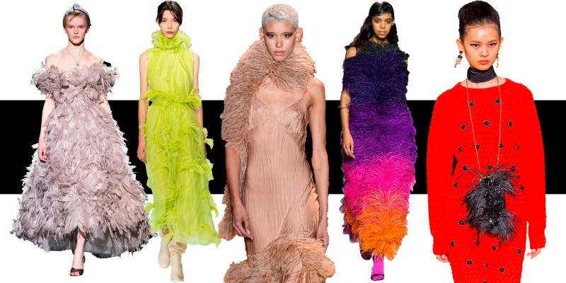 Feather Fashion Products Market