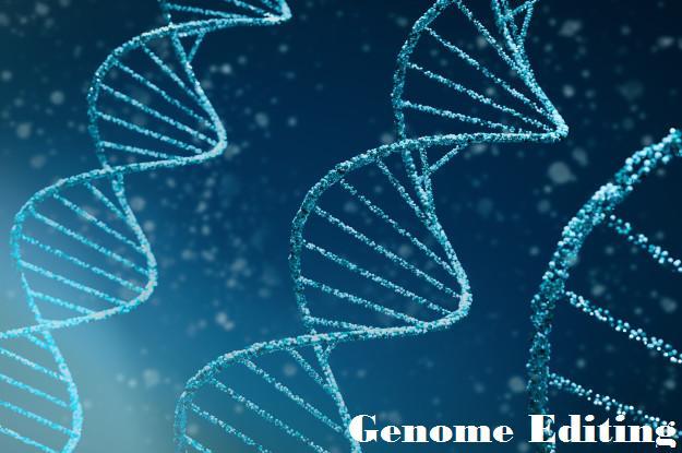 Genome Editing Market