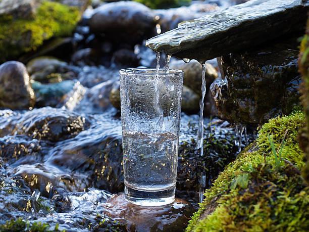 Spring Water Market - Data Bridge Market Research