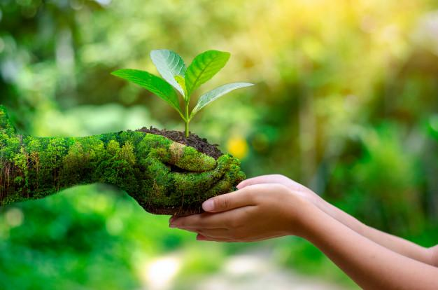 Environmental Remediation Services Market