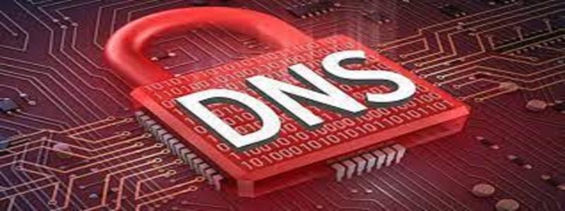 Secure DNS Software Market
