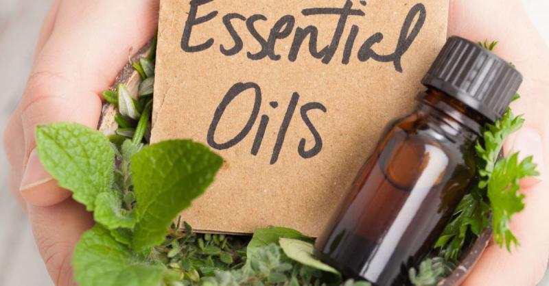 Global Mint Essential Oils Market