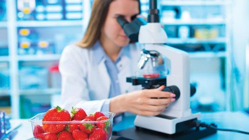 Food Pathogen Testing Market 2021 Top Company Profiles : 3M ,