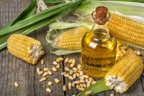 Global Corn Germ Oil Market 2021 Share, Growth Forecast