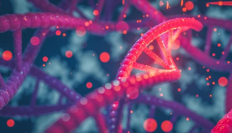 DNA and RNA Extraction Kit Market