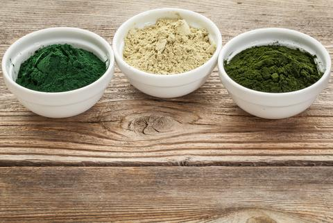 Algae Protein Market Key Data Points Mapped Including Top Key