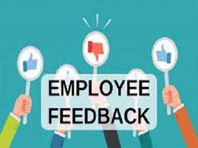 Employee Feedback Software Market